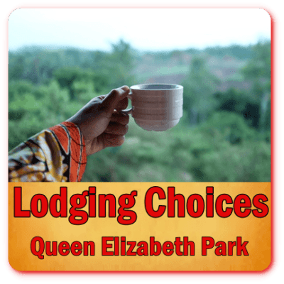 Top Lodging Choices -Queen Elizabeth Park