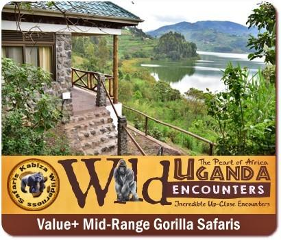 Fly in from South Africa - Trek Gorillas in Uganda