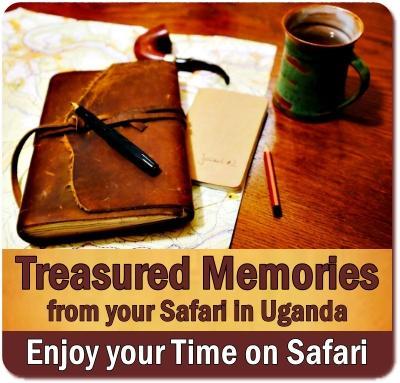 Keeping an African Safari Journal