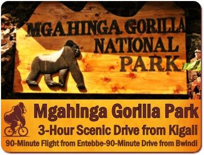 Top Things to Do and See in Mgahinga Gorilla Park