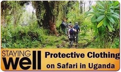 How to stay Healthy While on a Safari - Practical Tips and Advice