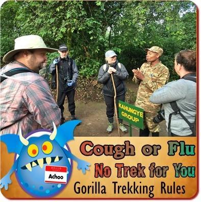 Choosing the Gorilla Family to Trek in Uganda - the Deciding Factors