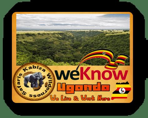 Unique Experiential Safari Activities in Queen Elizabeth Park - Uganda