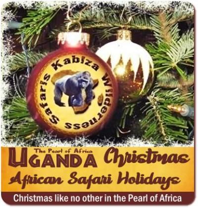 Christmas Gorilla Safari Holiday