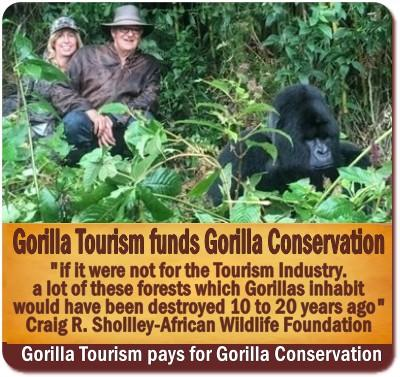 5-Things You Never Knew About Gorilla Trekking-The Reality versus the Myths