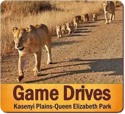 Private 12-Day Highlights of Uganda Luxury Safari-Primates plus Big-5