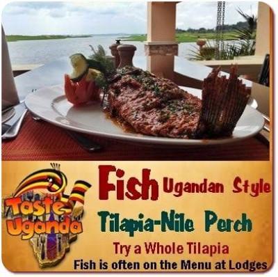 What will I eat on a Safari in Uganda? Safari Food