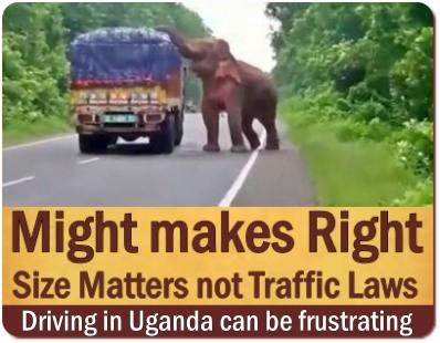 Avoid a Self-Drive Safari in Uganda - a Bad Idea