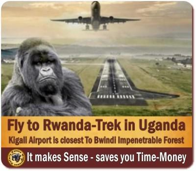 Fly into Rwanda - Trek Gorillas in Uganda