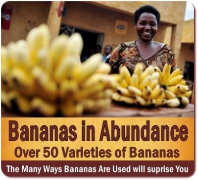 Discover Uganda -The Tropical Fruit Basket of Africa-A taste of Paradise