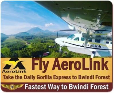 4-Day Fly-In Twice Gorilla Trekking Luxury Safari - Uganda