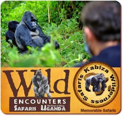 5 Day Luxury Fly-In Gorilla Trekking and Wildlife Safari in Bwindi Forest