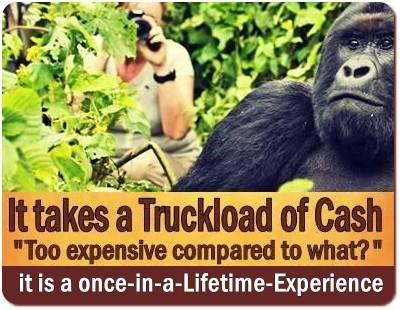 Why is a Gorilla Trekking Safari so Expensive?