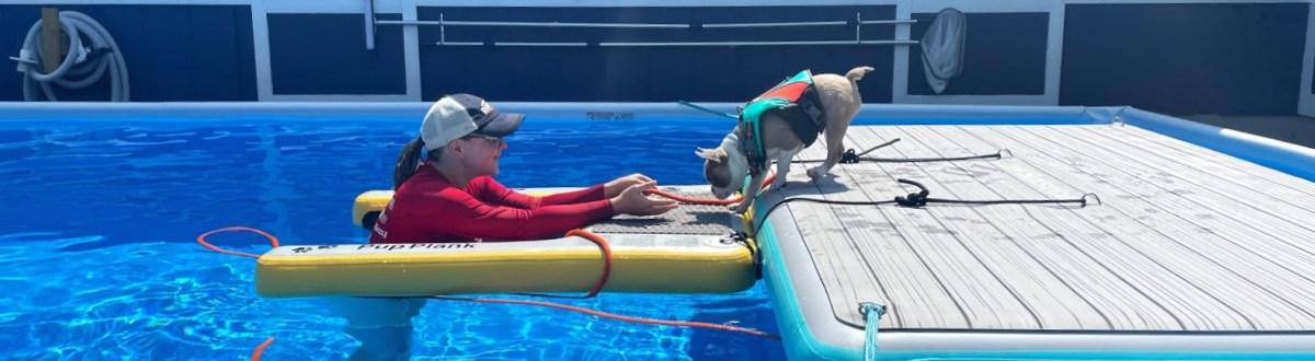 Asheville Dog Swim Center