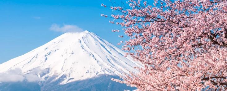 20190319_富士山