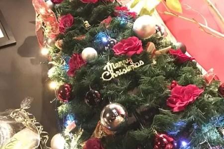 クリスマスツリー飾って