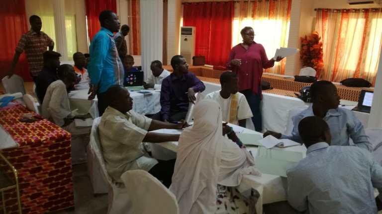 Workshop in Niger
