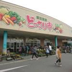 美味しい野菜を求めて60キロ。