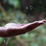 水滴が落ちる画像