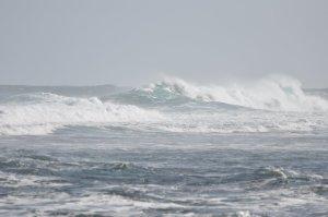 waves on samsaric ocean