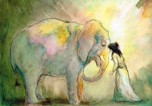 elephant in dream