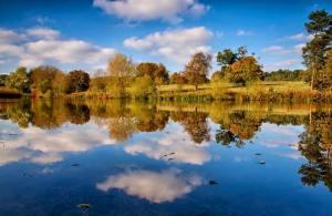 reflection of Madhyamaka lake