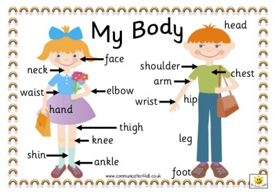 my-body