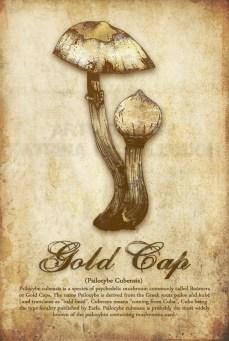 Gold Cap