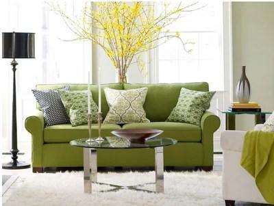 green-living-room-ideas-2011-11