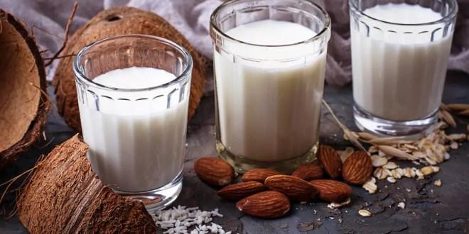 bitkisel sütün faydaları