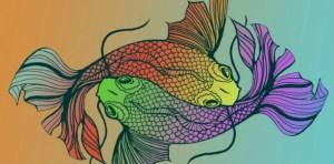 Balık Burcu Genel Özellikleri, Balık Burcu Kadını ve Erkeği