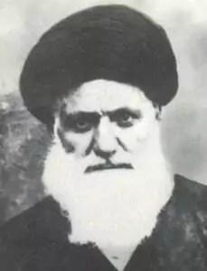 سیدمحسن امین جبل عاملی