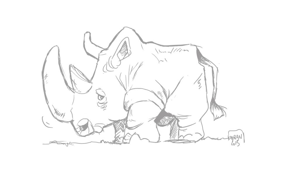 rhinoschetch