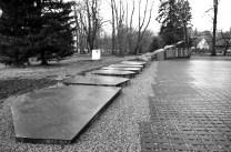 monument_foto-by-triin-jermakov