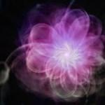 Blooming-Energy image
