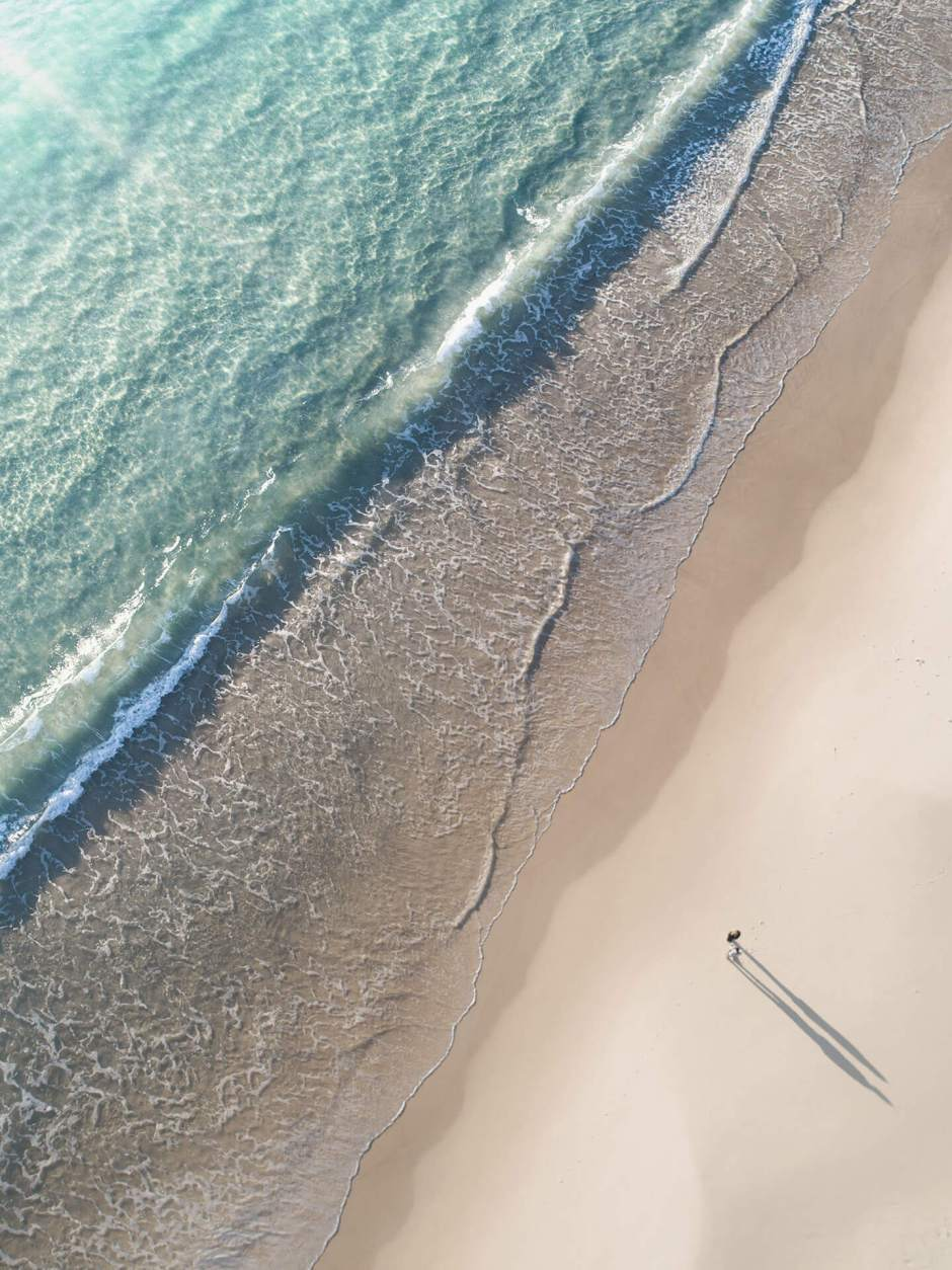 Aerial Photo of Couple at Seal Rocks