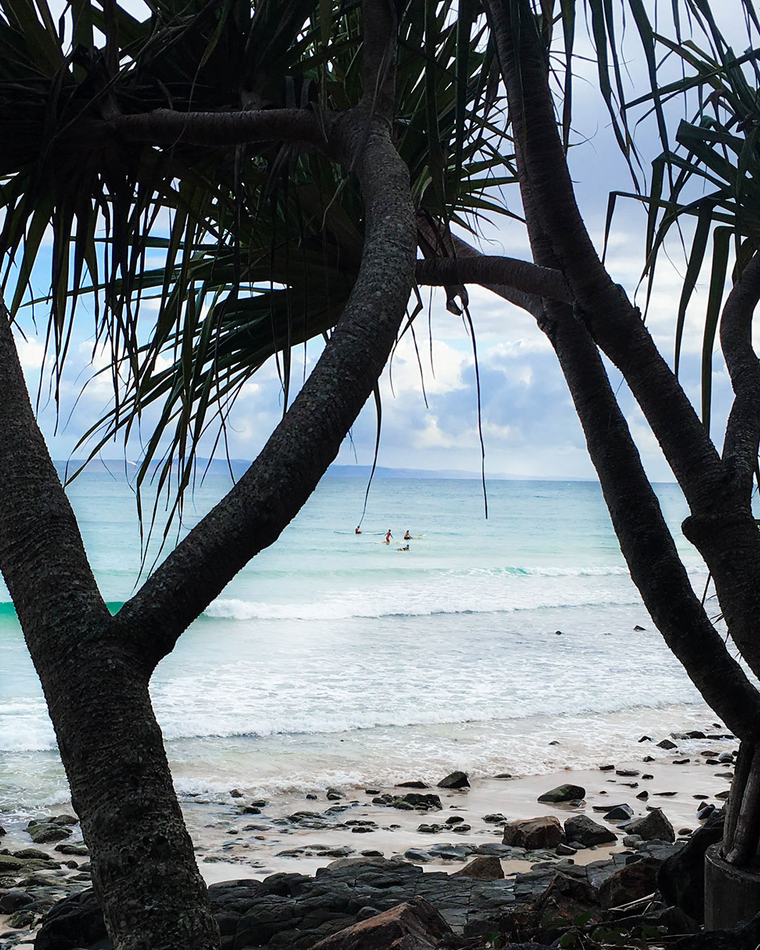 Longboarders Captured Through Pandanus Trees
