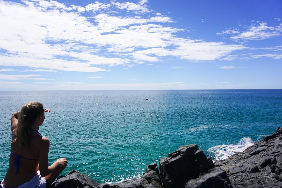 Whale At Noosa Fairy Pools
