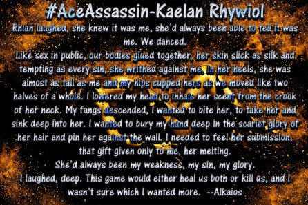 Ace Assassin Blurb 2