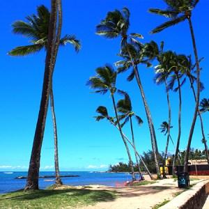 ハワイ2019