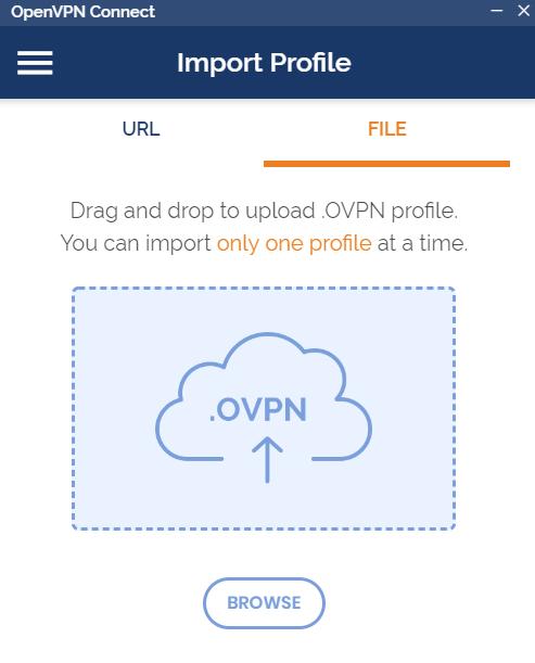 หน้าจอโปรแกรม OpenVPN client ในส่วนของ Import Profile จากไฟล์
