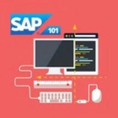 The Complete SAP S/4HANA Bootcamp 2021: Go from Zero to Hero