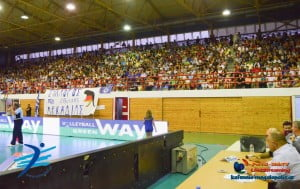 volley-greece-hungary (2)