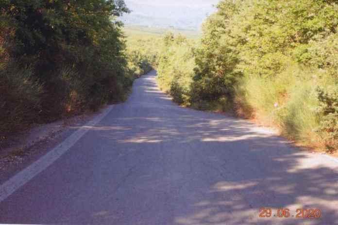 Επικίνδυνοι επαρχιακοί δρόμοι στην Μεγαλόπολη αφού η Περιφέρεια δεν έχει καθαρίσει κλαδιά και χορτάρια