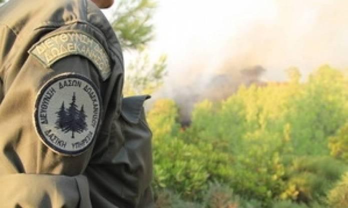 Πρόσληψη 6 δασοφυλάκων με 4μηνη απασχόληση στον Δήμο Μεγαλόπολης