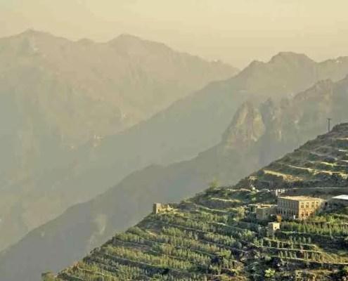 Kaffee Neuheit aus dem Jemen