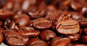 Fakten zum Kaffee