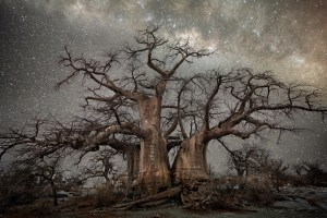 """Fornax"" in the ""Diamond nights"" photo series by Beth Moon at bethmoon.com (Direct website link embedded within.)"