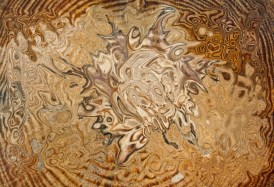 """Bruno Paolo Benedetti, """"Total Brown,"""" at absolutearts.com (Direct website link embedded within.)"""
