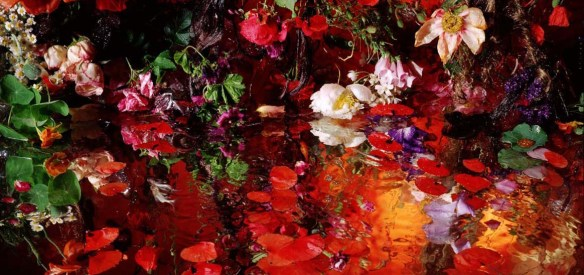 Art photo by Margriet Smulders via her website. (Direct link embedded within.)